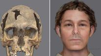 Face reconstruction