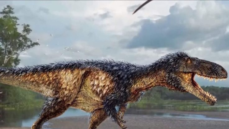 T Rex missing link discovered
