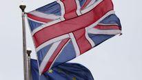EU Referendum Flags