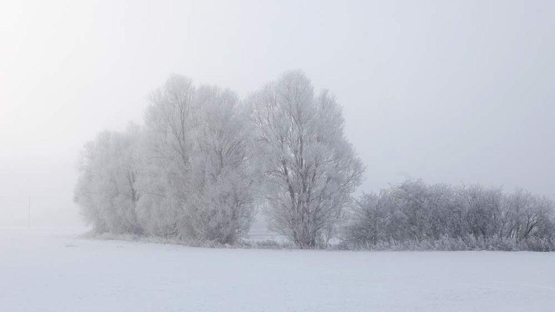Frosty weather