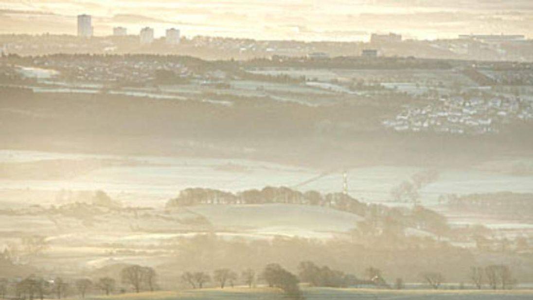 95 cows frosty weather scotland snow