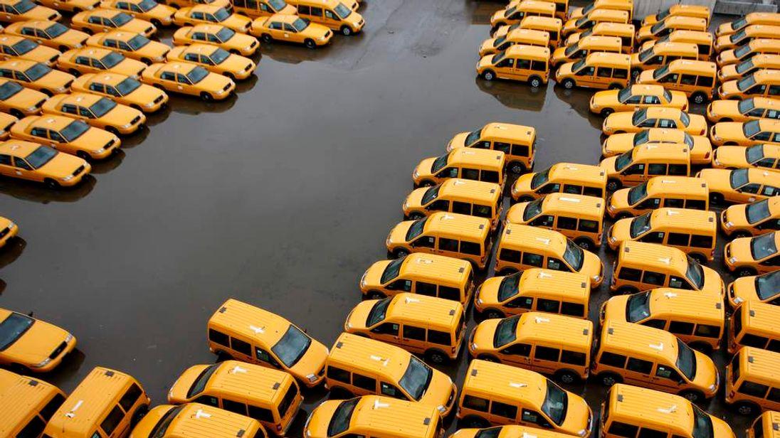 Fleet of yellow cabs