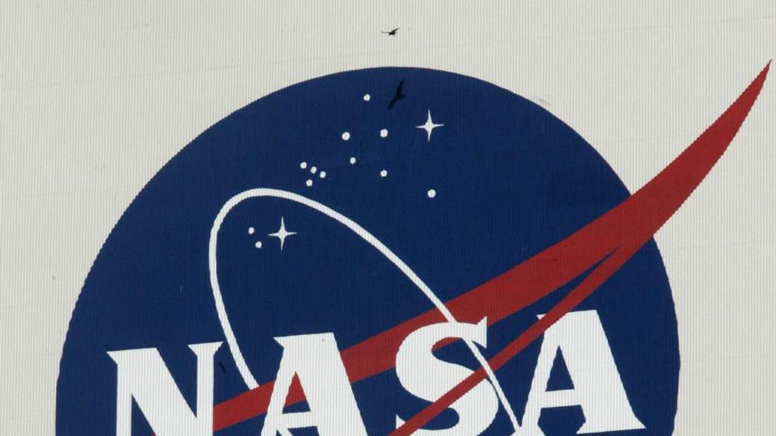 Vultures fly past a NASA logo on the Veh