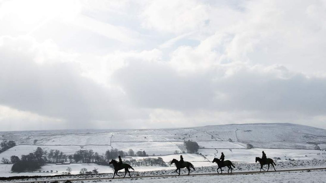 Horses are exercised on the gallops at Middleham, North Yorkshir