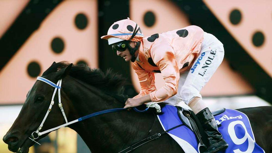 Nolen rides Black Caviar to win the TJ Smith Stakes at Royal Randwick racecourse in Sydney