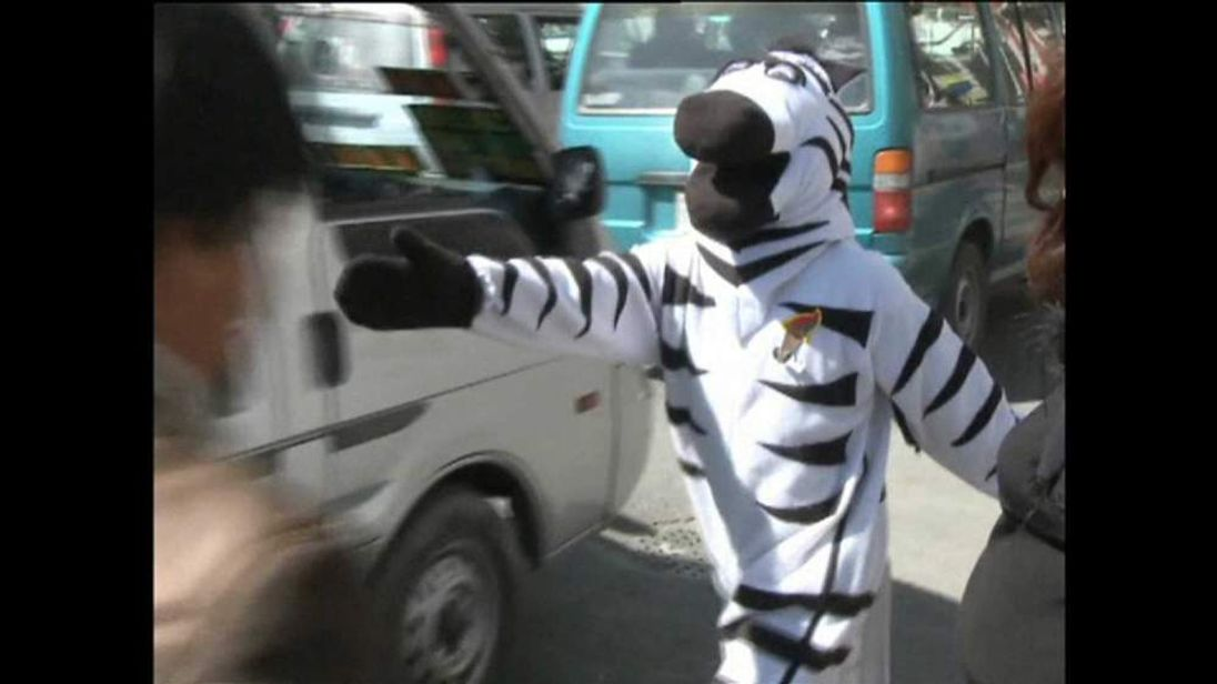A 'traffic zebra' on patrol in La Paz, Bolivia