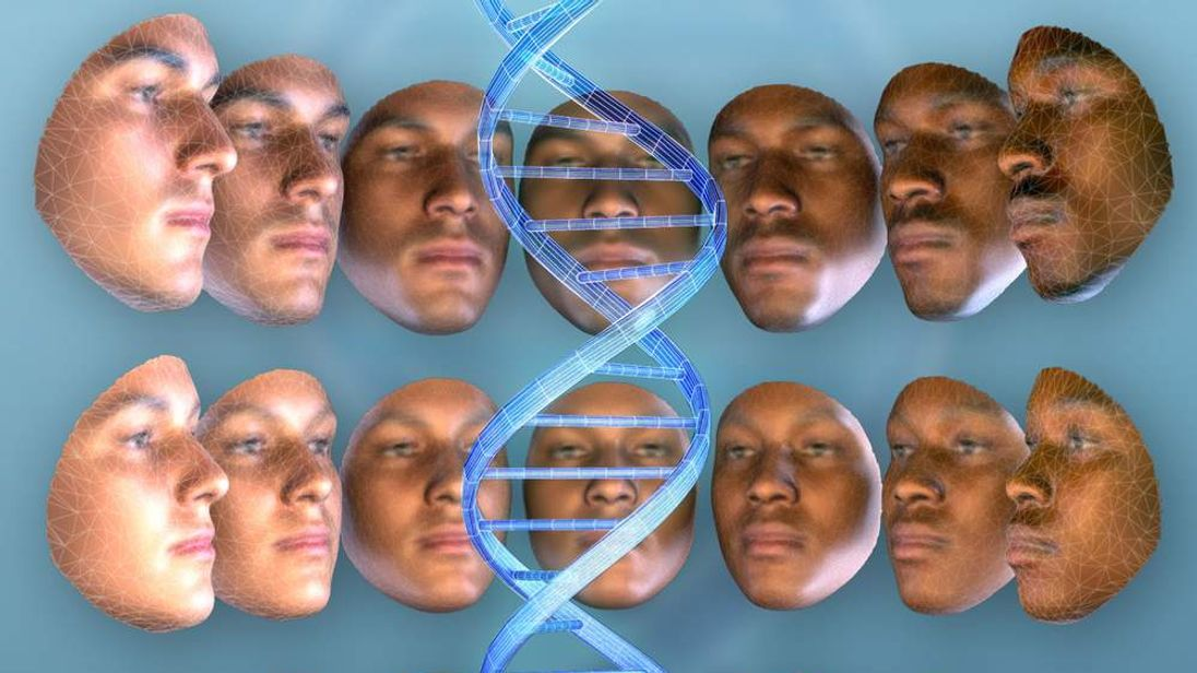 DNA Could Lead To Offender's Face