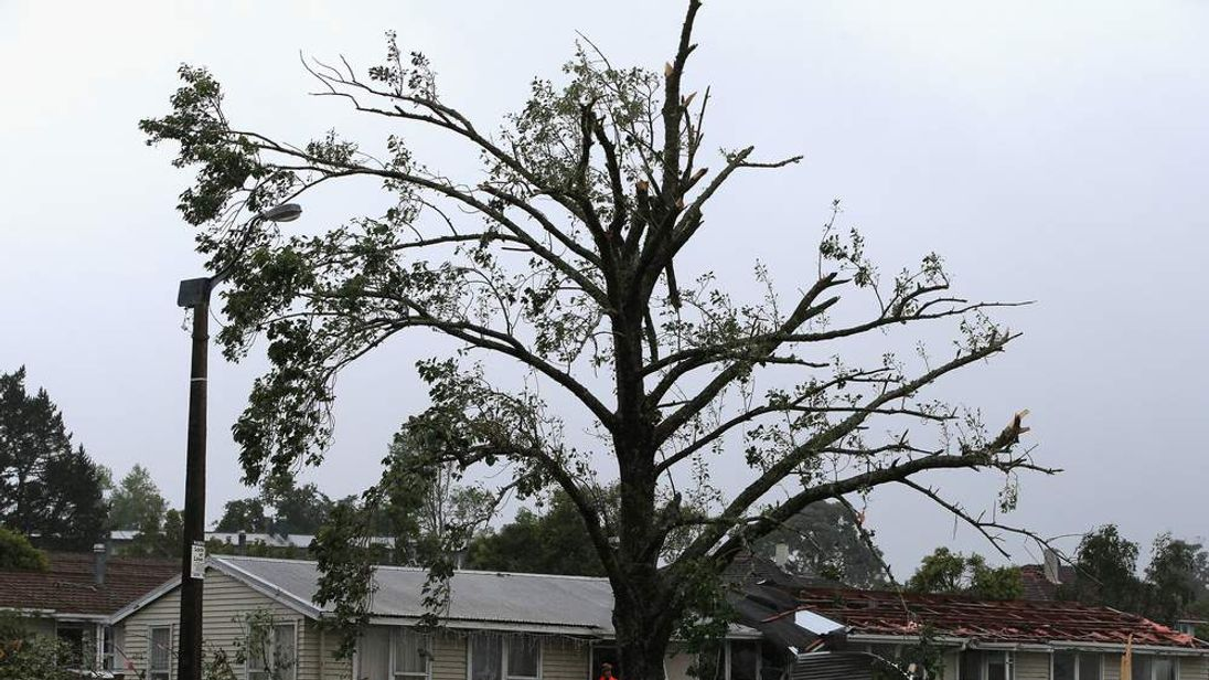 Tornado Hits West Auckland