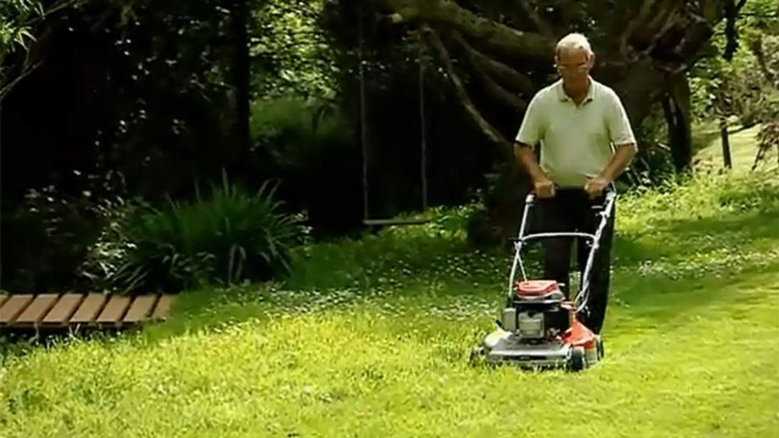 A Mountfield lawnmower in action