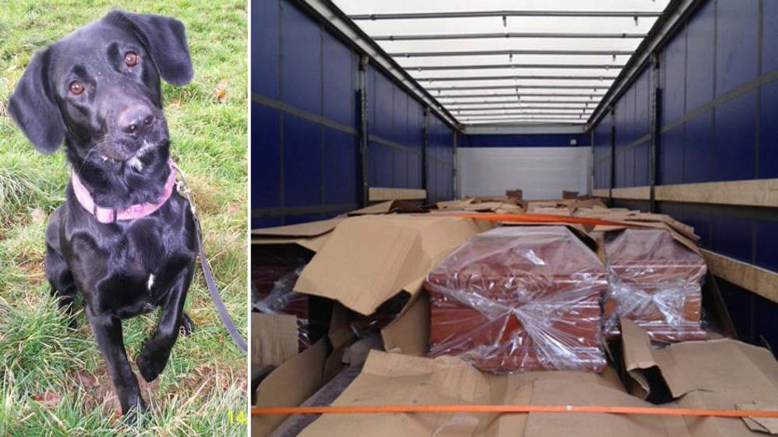 Men Stopped From Entering UK After Being Found In Coffin Truck