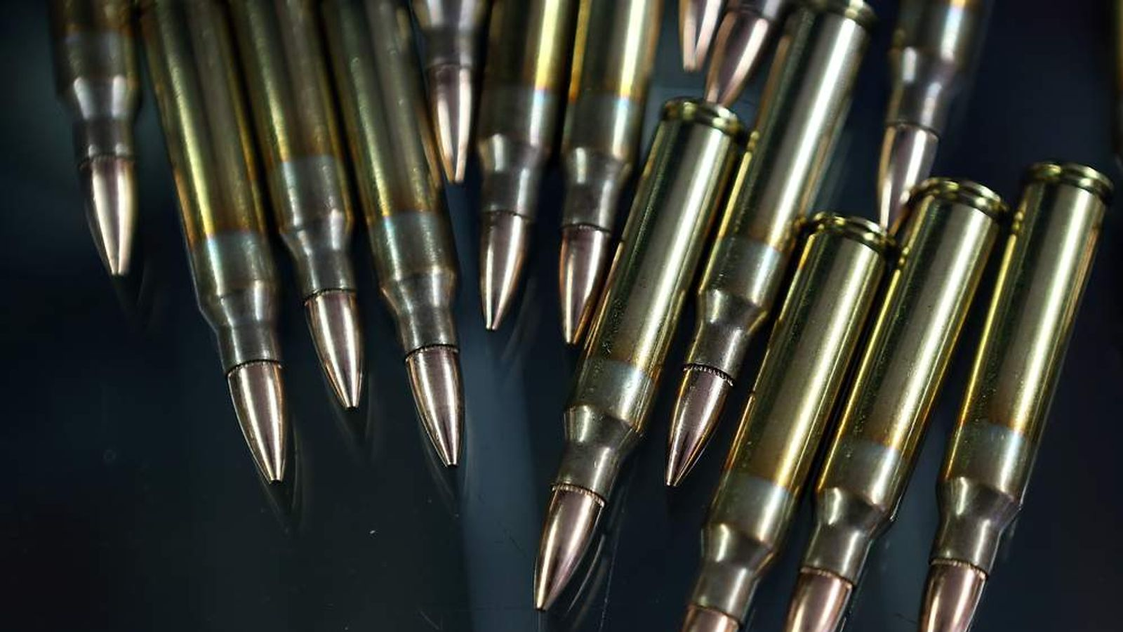 .223 cartridges can be used for hunting or target shooting