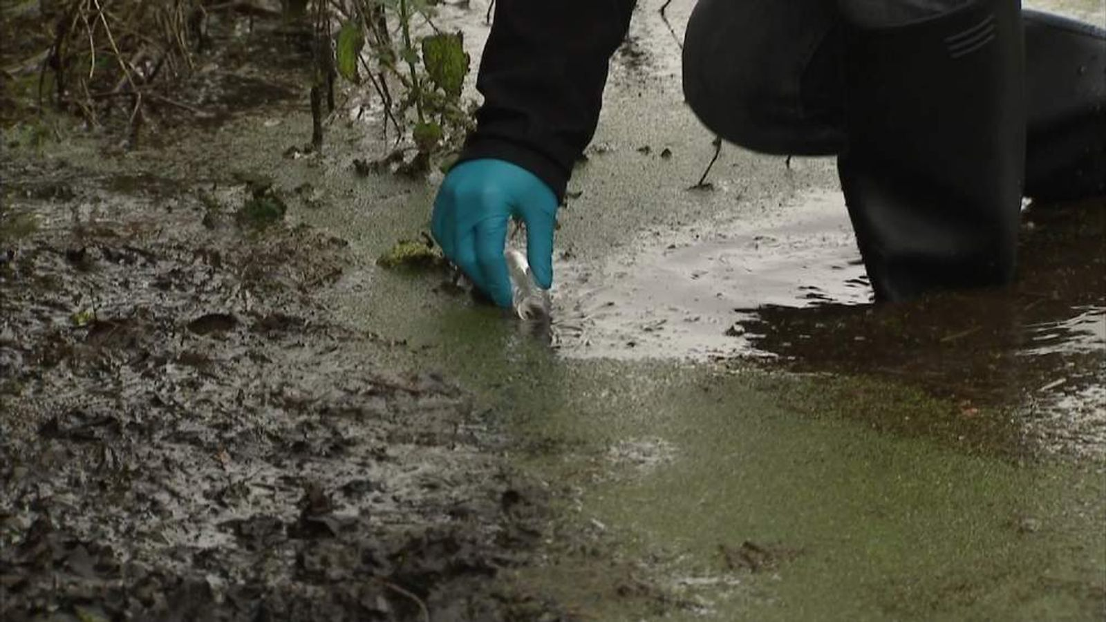 Somerset floodwater tested