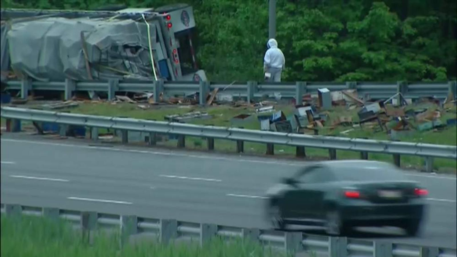 Bees swarm the I-95 highway in Delaware after a lorry crash