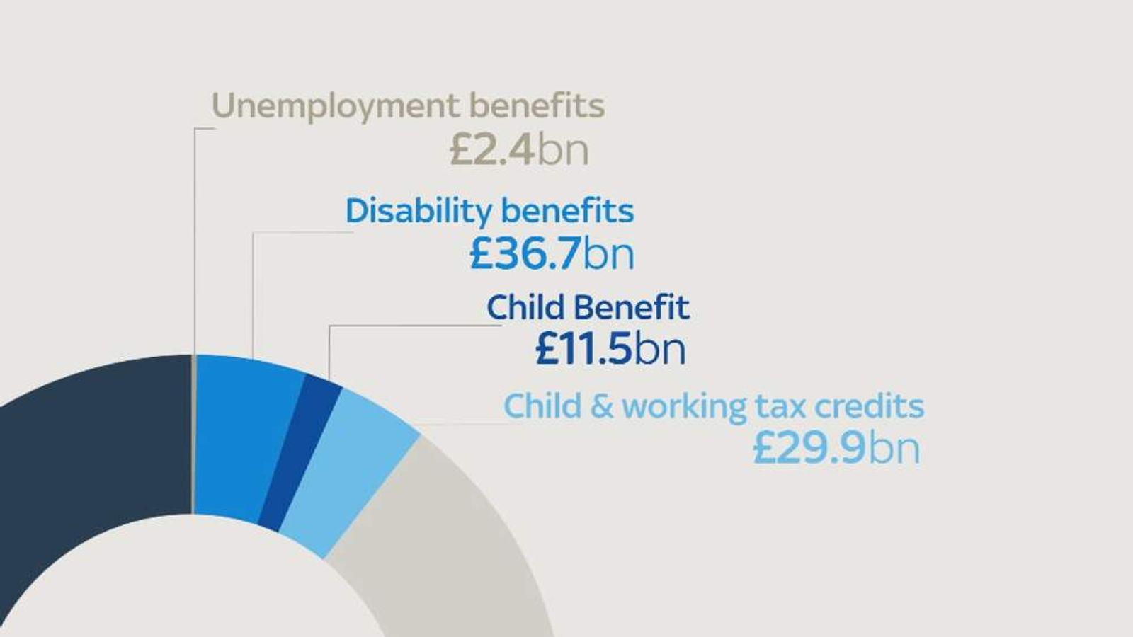 Welfare Budget