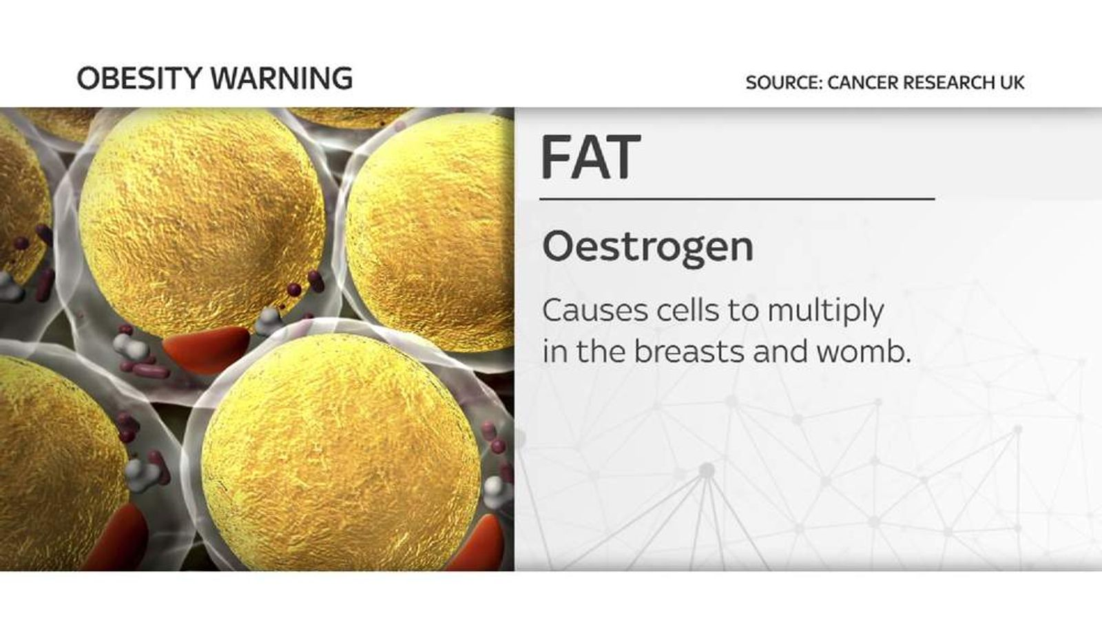 Obesity cancer graphic
