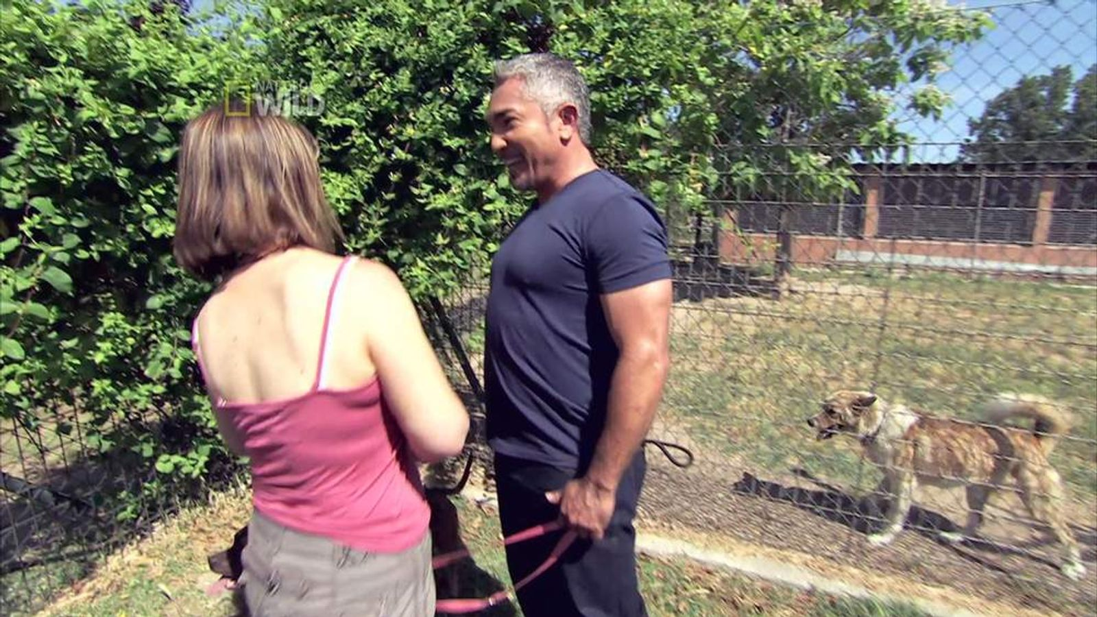 Cesar Millan in Leader of the Pack.