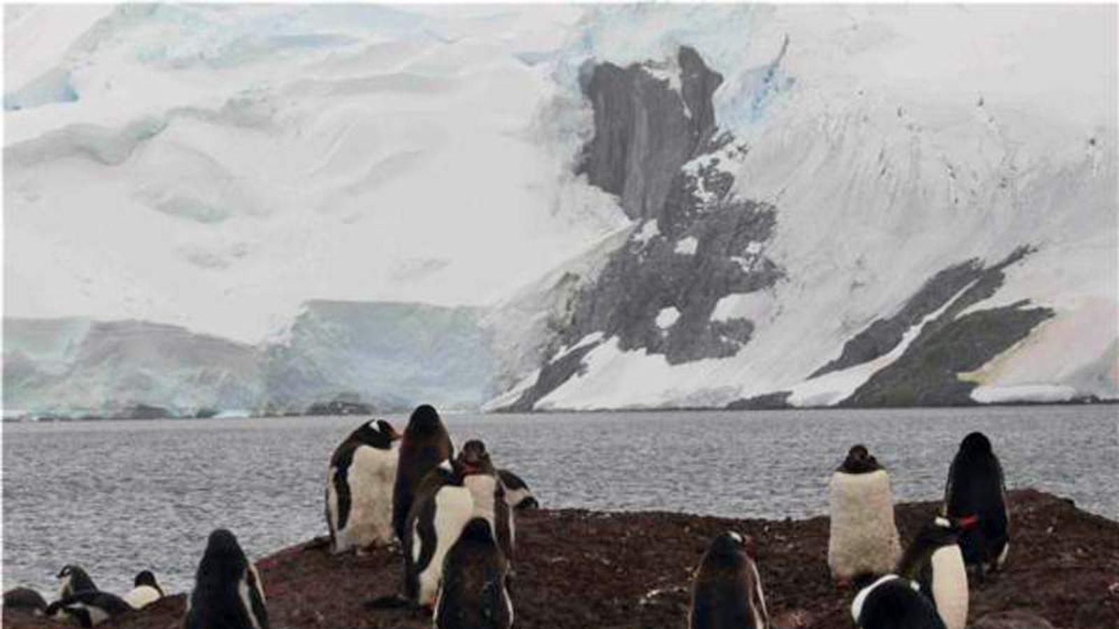 Mickelson Harbour, near Trinity Island, Antarctic Peninsula