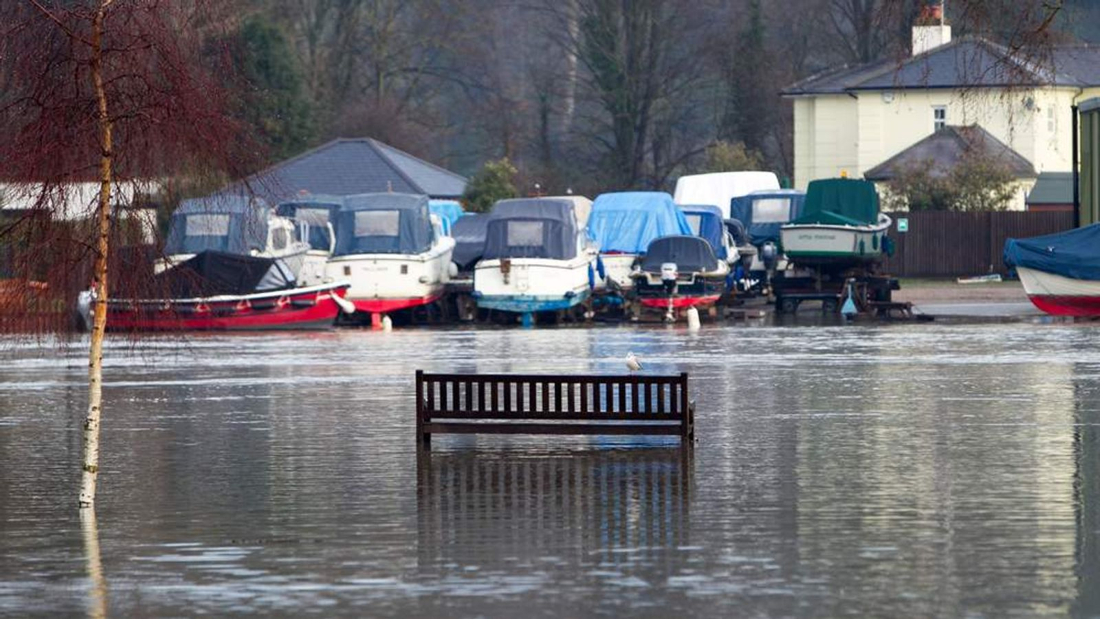 A man died after falling into the River Thames, which is flooded in Henley