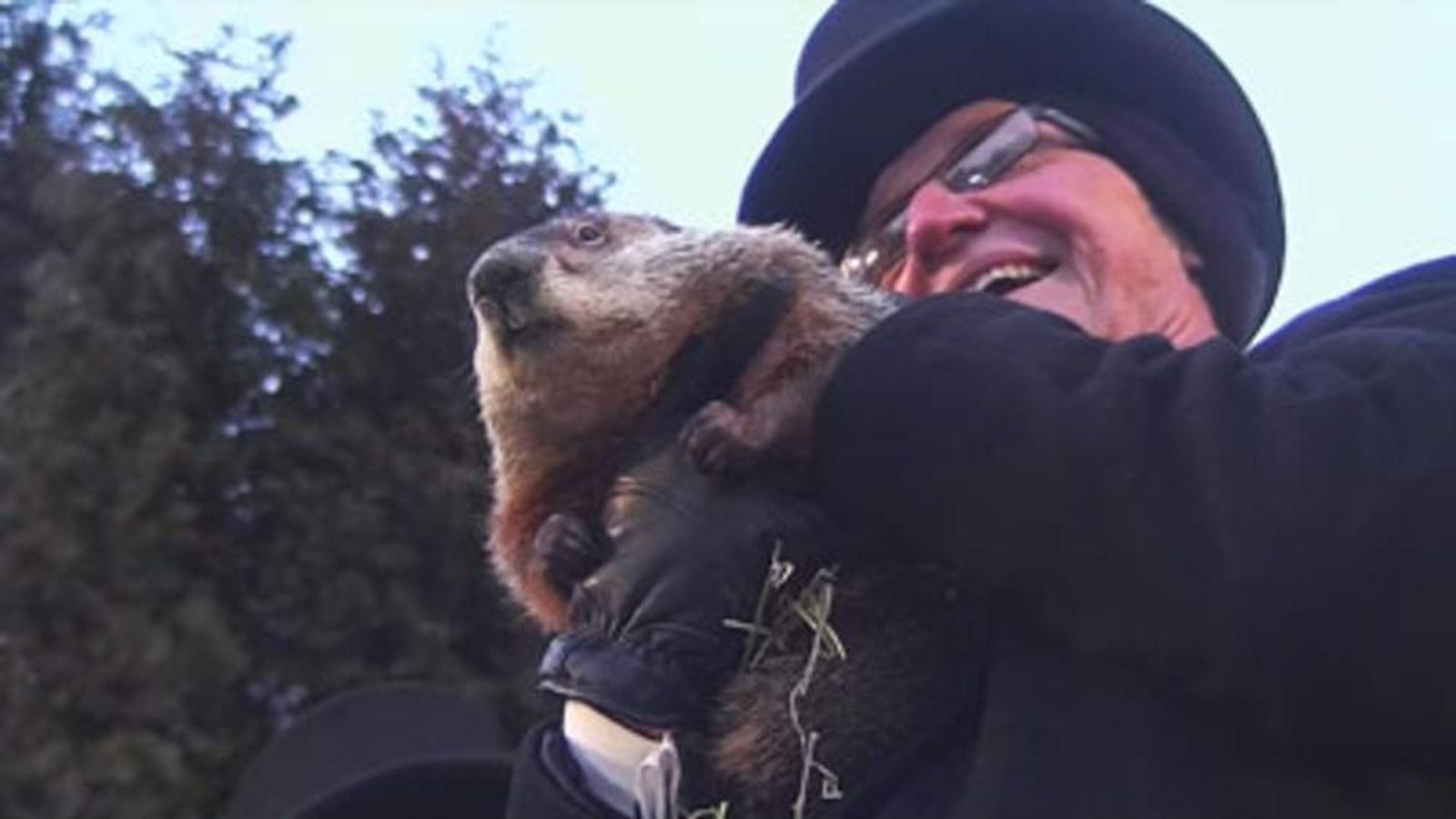 Punxsutawney Phil on Groundhog Day in Pennsylvania, USA.