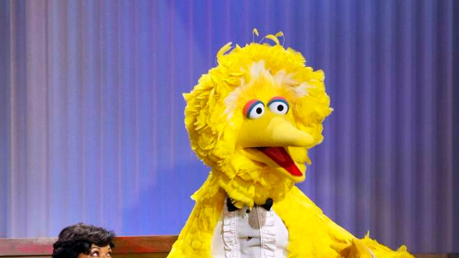 Sesame Street's Big Bird After Mitt Romney Debate Remarks