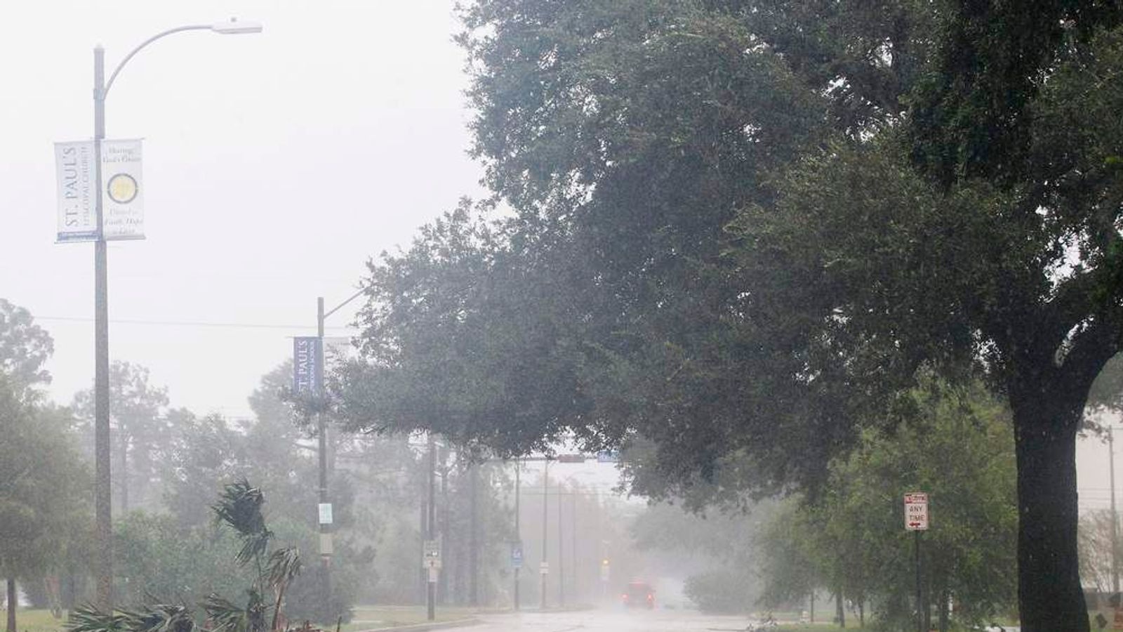 An uprooted tree blocks a road as Hurricane Isaac hits New Orleans.