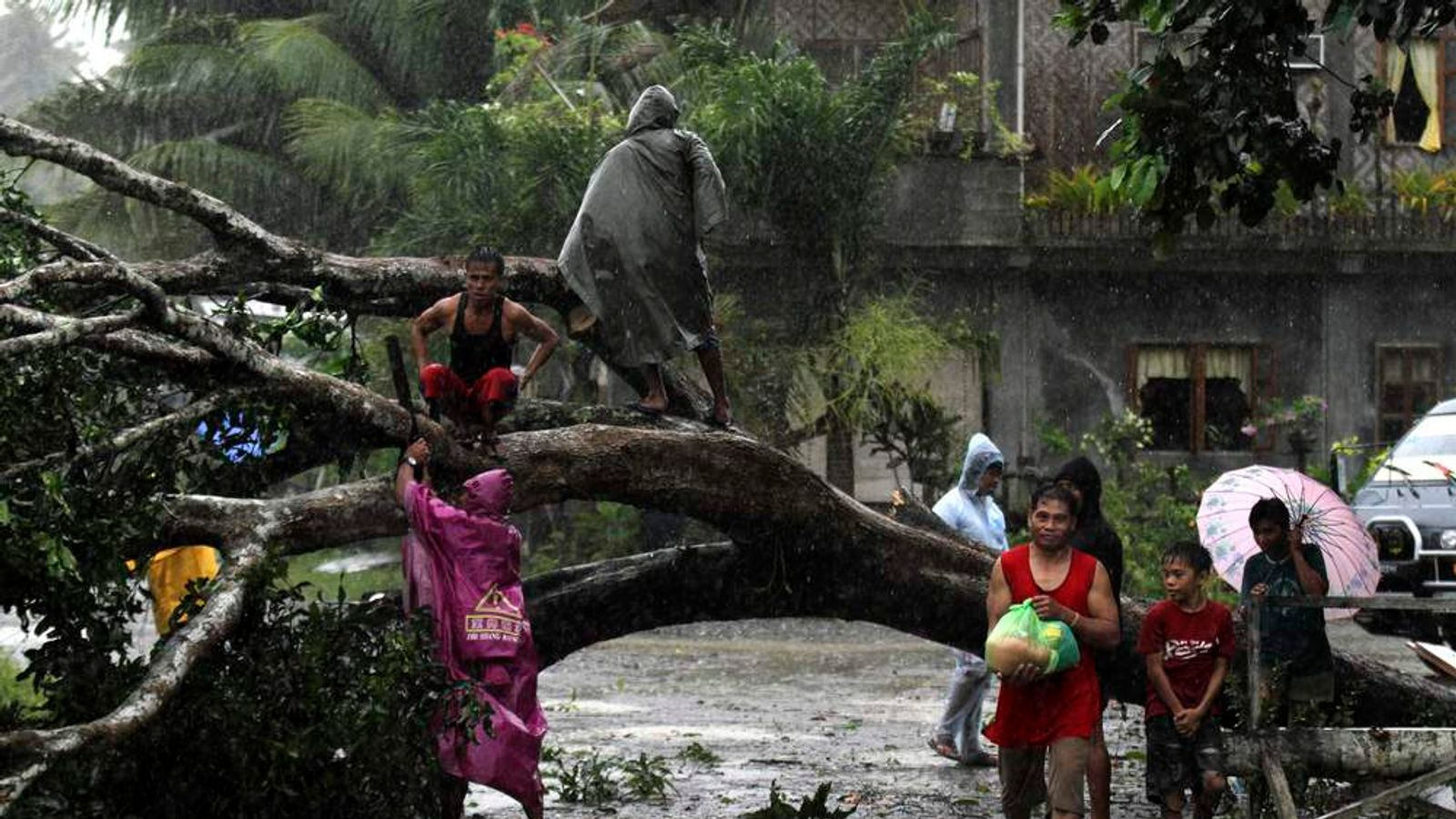 Residents saw an uprooted tree to clear the road after Typhoon Bopha hit Tagum City