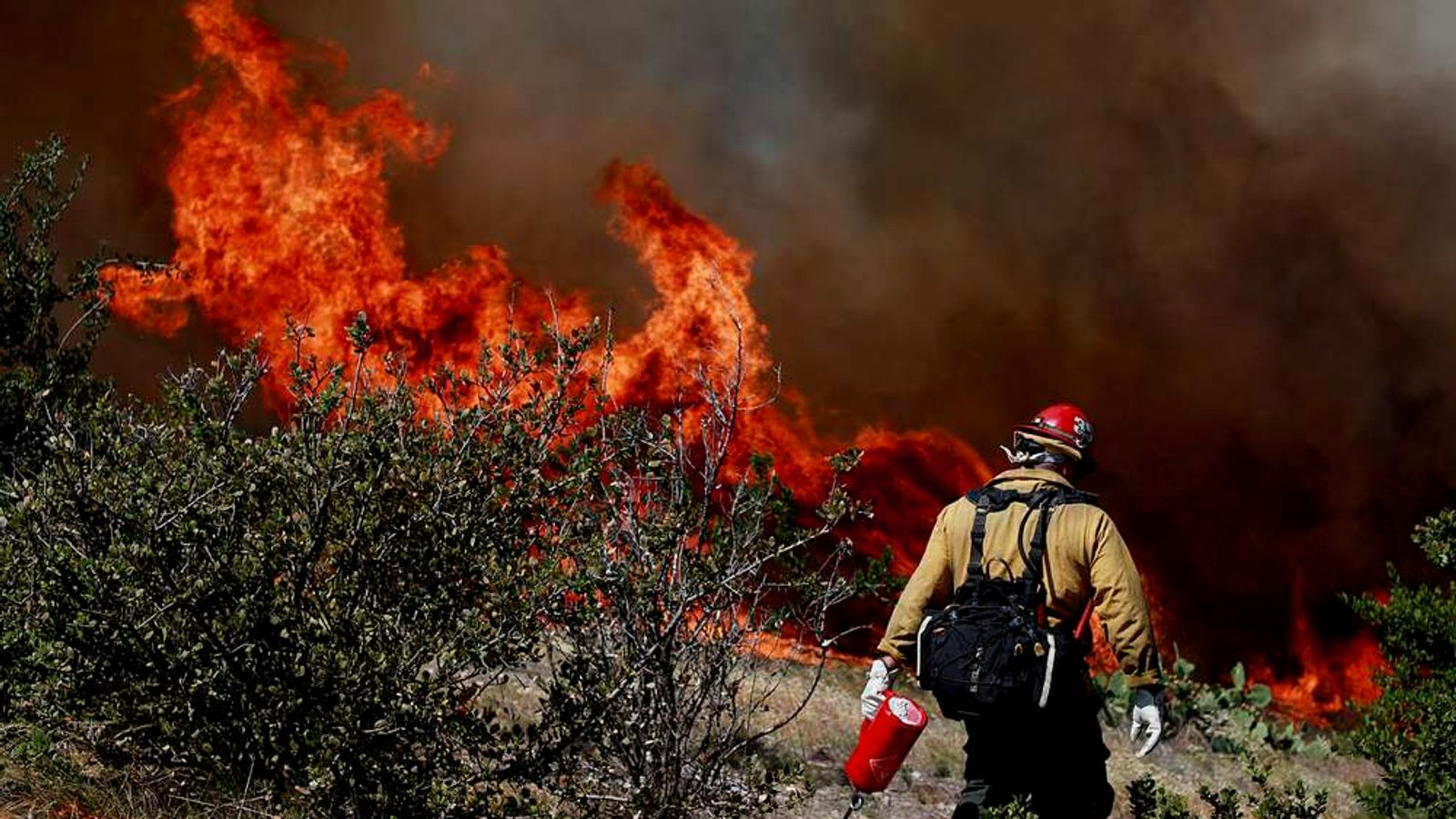 San Diego Wildfires Spread In Southern California