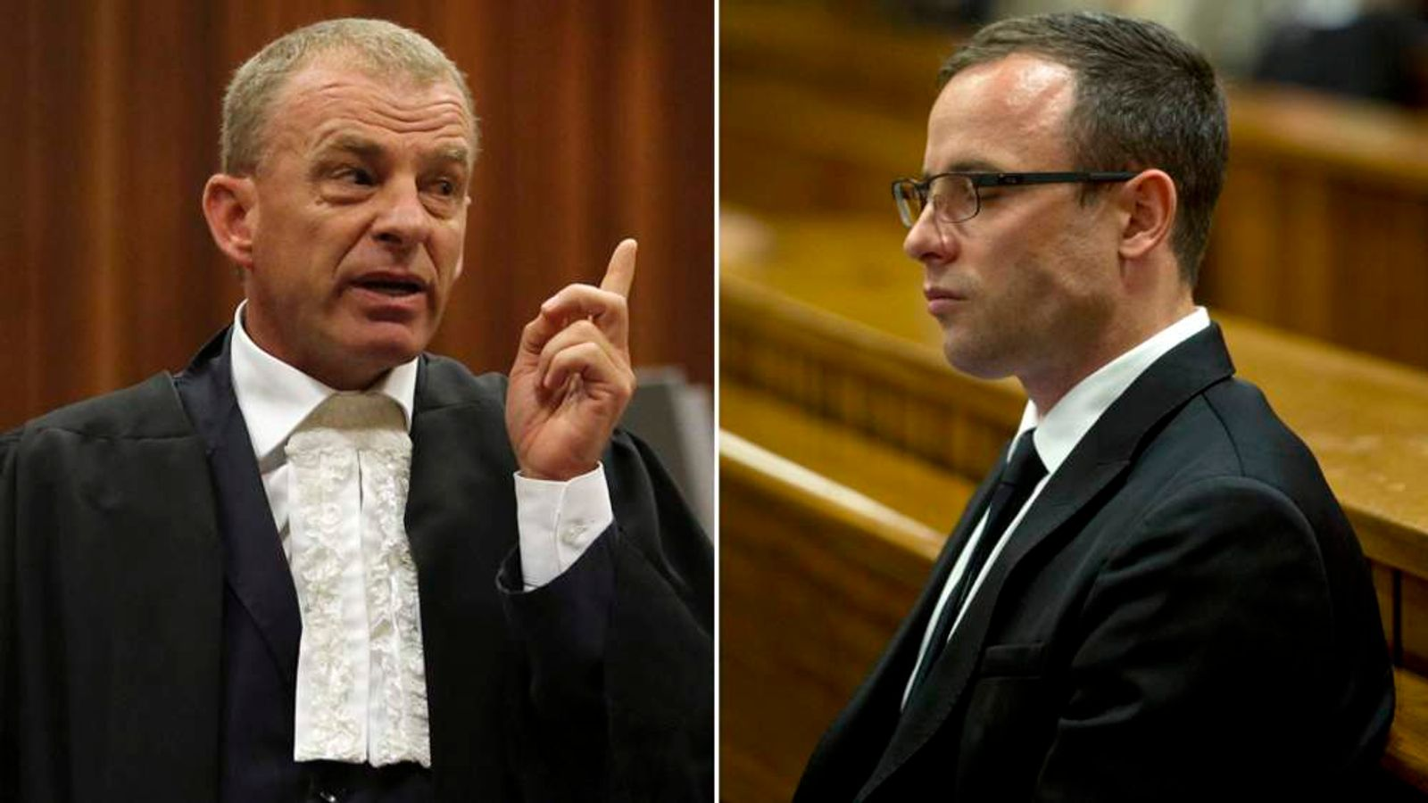 Nel cross examines the pathologist during the murder trial of Oscar Pistorius at the high court in Pretoria