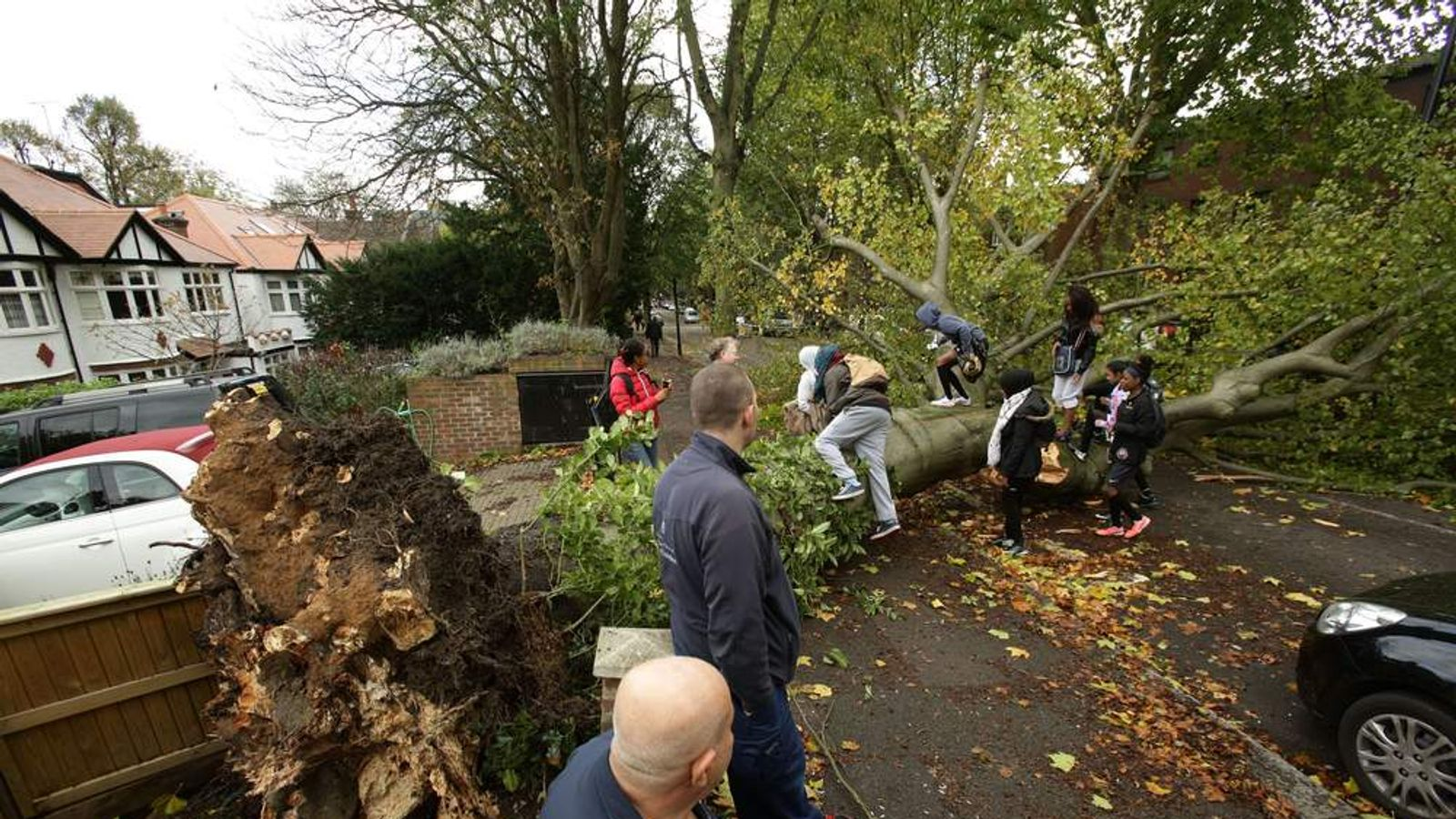 Passers-by climb over a fallen tree lying across the road in Shepherd's Hill, north London