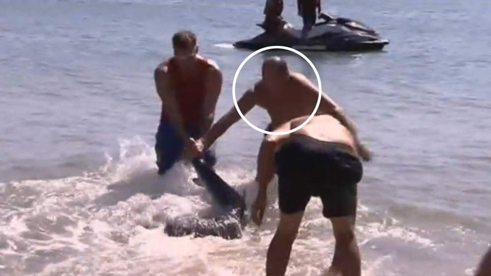 A Welshman holidaying in Australia fights off a dangerous shark after it strayed too close to children swimming on a beach.