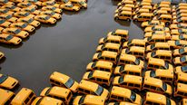 Fleet of yellow cabs