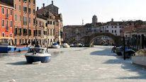 Venice freezes