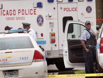 Chicago gun crime file