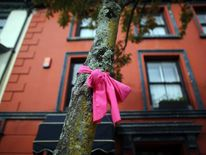 Pink ribbons are displayed as the search for missing April Jones continues
