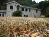 A dried lawn stands in front of a home on July 15, 2014 in Lagunitas, California.