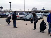 Shoppers keep a monkey out of harm's way