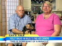 Holly the cat travels 190 miles home
