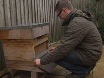 Beekeeper Mark Paterson