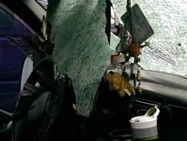 Goose crashes through windscreen in Colorado