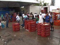 The fish market in Macae, Brazil