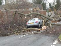 A falling tree damaged this car in Hexton in Hertfordshire