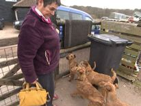 Jan Fletcher with her dogs