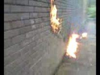 Michael Piggin molotov cocktail video