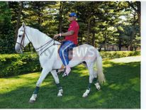 Dennis Rodman riding a horse whilst in North Korea