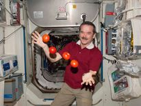 NASA handout photo of Canadian Space Agency astronaut Chris Hadfield