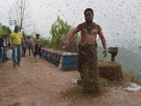 She Ping shakes off bees after an attempt to cover his body with bees in Chongqing municipality.