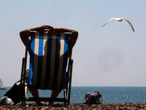 A seagull flies over a sunbather on Brighton beach in southern England