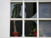 House plants stand on sill of broken window following explosion of World War Two bomb in Euskirchen