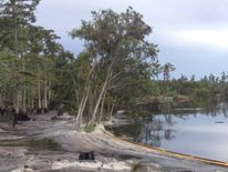 Louisiana sinkhole