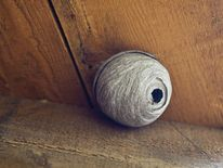 A typical wasp nest in a home
